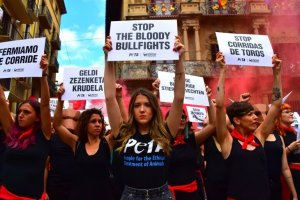 Stop the Bullfights - Peta