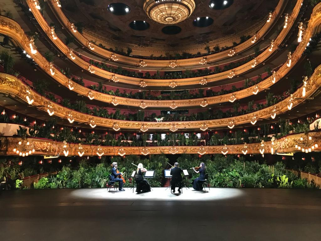 Opera for plants