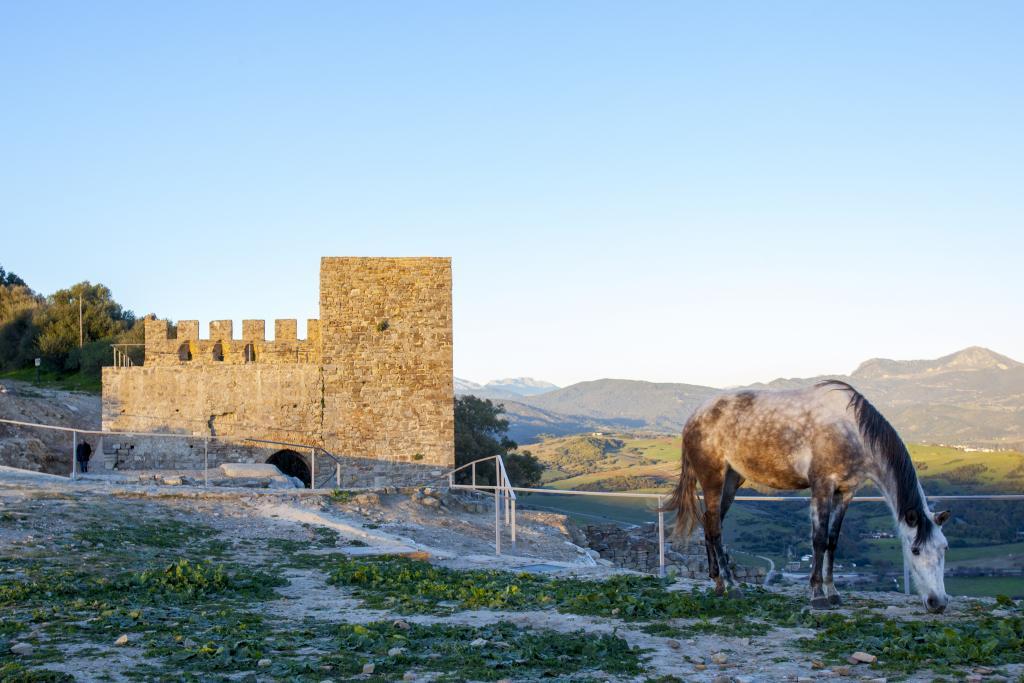 Jimena de la Frontera. (Andalucia.org)