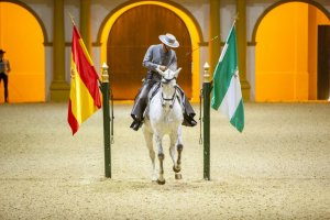 Royal Andalusian School of Equestrian Art. (Andalucia.org)