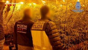 Image released by the Mossos d'Esquadra.