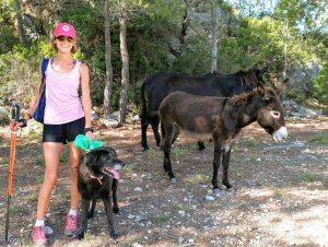 Marion Kuba, with her dog and two donkeys