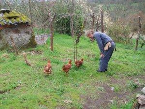 'S', the chicken whisperer.