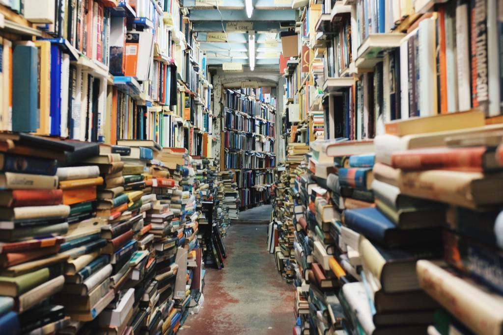 Bookshop image by Glen Noble / Unsplash.